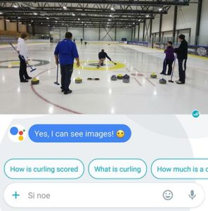 google-allo-curling-analyse